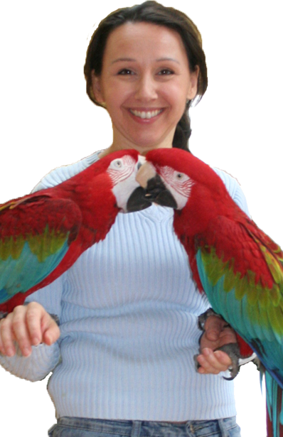 Parrot Coaching by Ann Castro