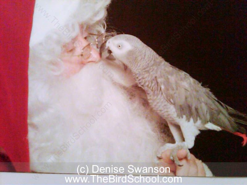 Photo: Denise Swanson